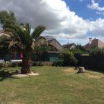 Après l'abattage d'un arbre à Ouistreham pour mise en valeur d'un palmier dates ; Jean Marie Desclos Paysagiste à Ouistreham